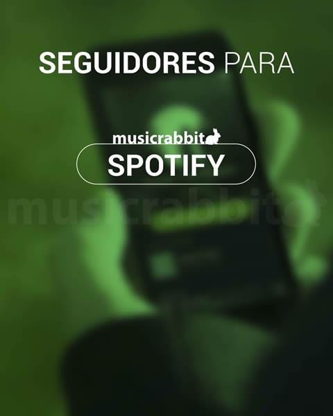 Seguidores para Spotify